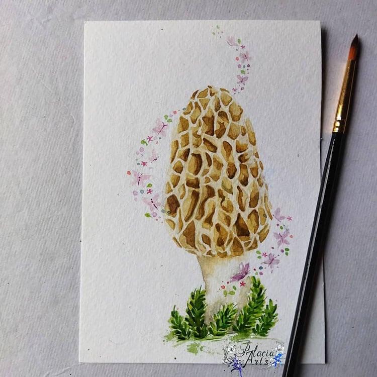 watercolor morel mushroom
