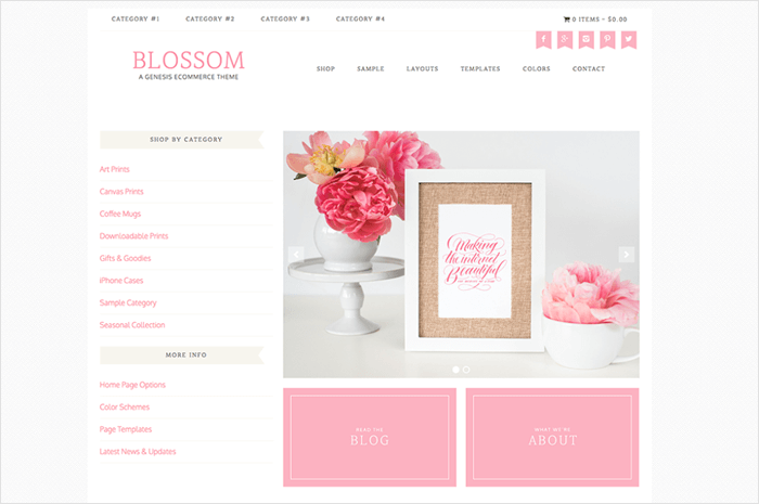 blossom-wordpress-theme