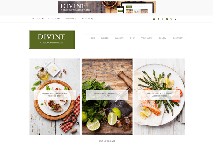 divine-wordpress-theme