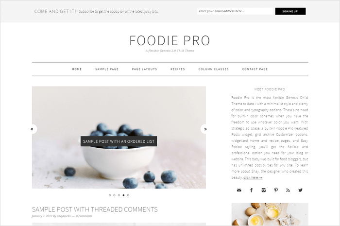 foodie-wordpress-theme