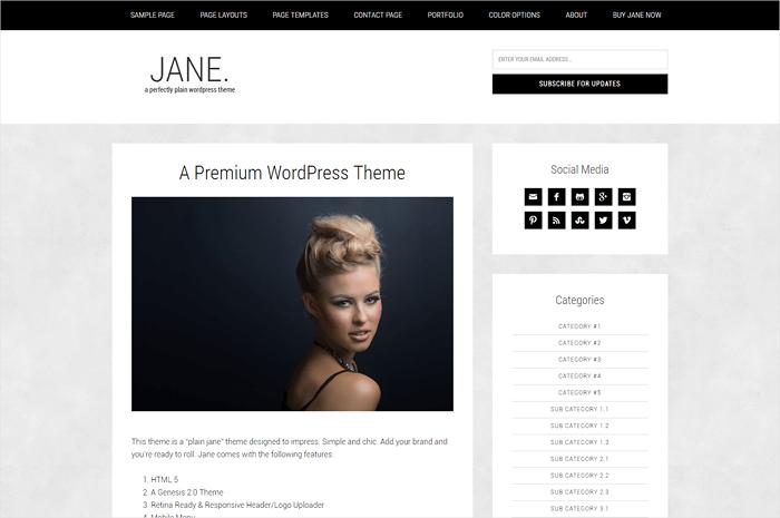 jane-wordpress-theme