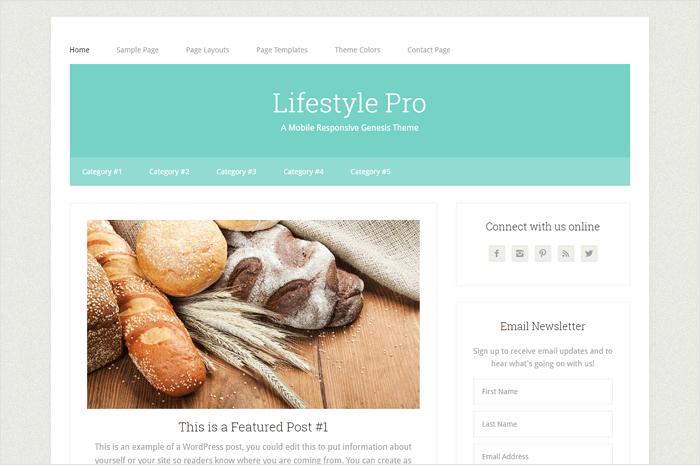 lifestyle-pro-wordpress-theme