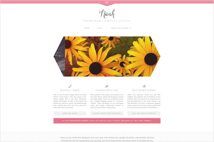 noah-wordpress-theme