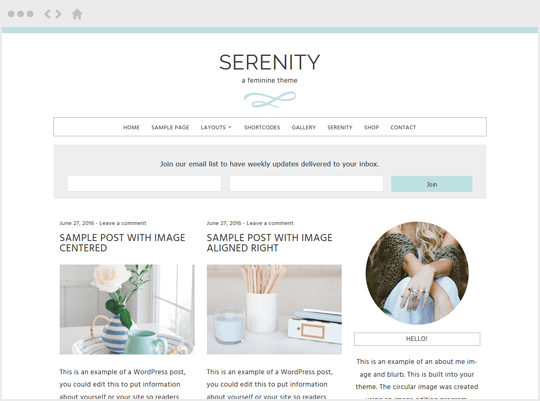 Serenity - feminine WordPress themes