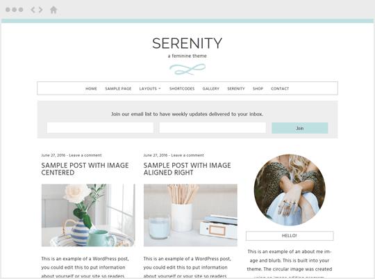 Serenity - feminine WordPress themes