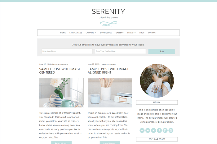 serenity-wordpress-theme