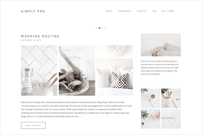 simply-pro-wordpress-theme