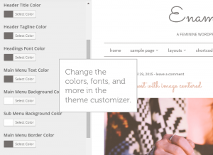 theme-customizer-enamored
