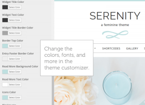 theme-customizer-serenity