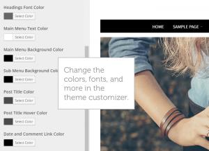 theme-customizer-simplicity
